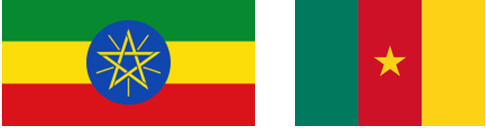 EthiCame-drapeau